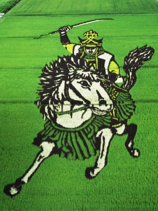 Tanbo Art, seni lukis di atas sawah.